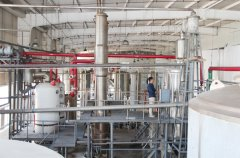 20TPD syrup plant set up in Uzbekistan about