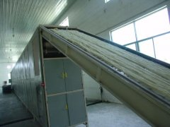 starch noodle processing machiner